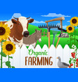 farming vegetable harvest farm animals and tools vector image