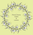 floral frame with callas and leaves vector image