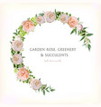 floral rose circle round wreath with eucalyptus vector image