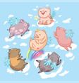 flying pigs in the clouds cartoon characters six vector image