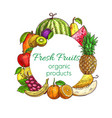 fresh fruit and tropical berry food sketches vector image vector image