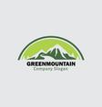 green mountain vector image