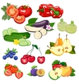 Set of vegetables and fruits vector image vector image