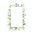 watercolor frame green branches and vector image vector image