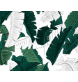 foliage jungle pattern hand drawn outline black vector image vector image