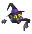 pointing cartoon witchs cat vector image vector image