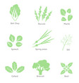 eco organic bio logos or signs salad bar vector image vector image