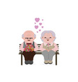 happy old senior couple in love vector image vector image