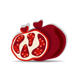 Pomegranates vector image vector image