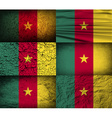 Flag of Cameroon with old texture vector image vector image