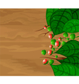 Green leaves on wood with flower background vector image vector image