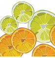 Orange and Lime fresh slices vector image vector image