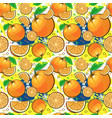 seamless pattern orange fruits summer ornament vector image vector image