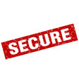 square grunge red secure stamp vector image