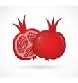 Two juicy ripe pomegranate pomegranates vector image vector image