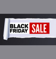 black friday sale action banner poster sellings vector image vector image