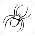 hand drawn spider isolated on white background vector image vector image