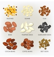 Icons of seeds and grains beans vector image vector image