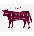 Scheme of Beef Cuts for Steak and Roast vector image vector image