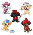 set puppy dog labrador retriever vector image vector image
