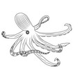 tentacles of an octopus hand drawn vector image