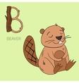 Alphabet letter B beaver children vector image