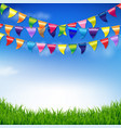 bunting birthday flags with sky and grass border vector image