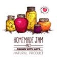Jam Jars Poster vector image