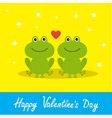 Happy Valentines Day Love card Two cute frogs Red vector image