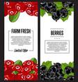 organic farm fresh berry flyer set vector image vector image