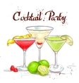 The Unforgettables Cocktail Set cocktail party vector image vector image