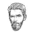 bearded stylish man portrait lineart vector image