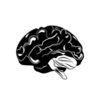 Brain hand drawn isolated on a white