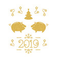 happy new year card - 2019 year pig vector image vector image