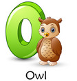letter o is for owl cartoon alphabet vector image