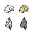 set hand-drawn seashells eps8 vector image vector image