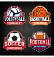 Set of basketball football soccer volleyball vector image