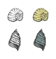 Set of hand-drawn seashells eps8 vector image