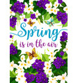 spring holiday flowers floral poster vector image vector image