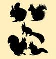 squirrel animal gesture silhouette vector image vector image