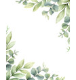 watercolor card green branches vector image