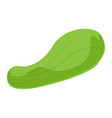 bottle gourd icon cartoon style vector image vector image