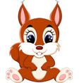 cartoon adorable squirrel vector image