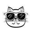 cat design animal concept flat vector image vector image