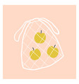net fruit bag with apples vector image vector image