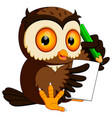 owl holding pencil and writing vector image vector image