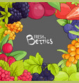 sweet berry frame vector image