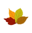 Autumn leaves icon vector image