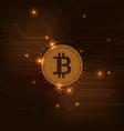 bitcoin vector image vector image