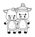 couple pigs cartoons design vector image